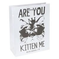 Пакет подарочный с глянцевой ламинацией  Модный кот